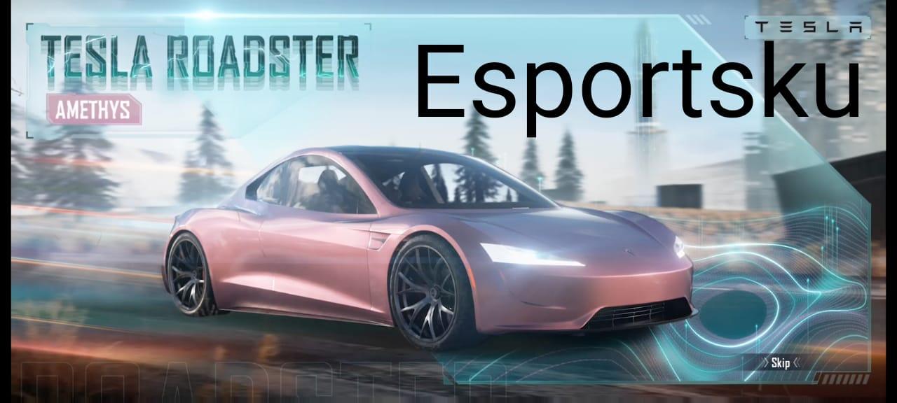 rincian 6 skin Tesla